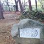 敏満寺城の焼石