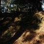 山城の名残である城砦化された時の石垣 4