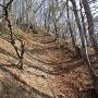 長大な竪堀(北東稜線)