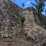 東の丸高石垣
