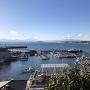 本丸から鐙摺漁港と富士山