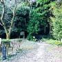 「登城の道」(二の丸・本丸への山道)