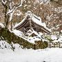 Facusangi冬