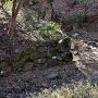 西曲輪の堀