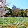 シロトピア記念公園[提供:姫路市]