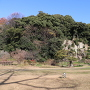 庭園区から展望台を望む