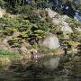 内堀にある自然石