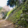 天主跡の石垣