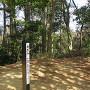 天王山の山頂碑と幟