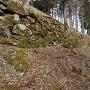 ホウヅキ段の下の石垣