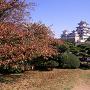 西の丸庭園から姫路城(改修前)[提供:姫路市]