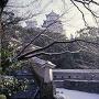 はの門から雪の天守を望む(改修前)[提供:姫路市]