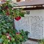 称名寺の七騎供養塔案内板