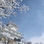 冬空に浮かぶ岐阜城