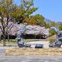城見台公園から姫路城を望む(改修前)[提供:姫路市]