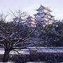 雪と大天守(改修前)[提供:姫路市]