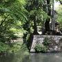 松平氏館跡の水堀と石垣