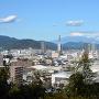 本曲輪跡から富士を望む
