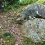 (伝)石垣跡