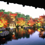 好古園の紅葉[提供:姫路市]