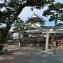 岡崎城と龍城神社