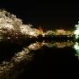 堀端の夜桜[提供:一般社団法人米沢観光物産協会]