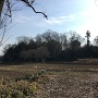 鷲神社参道から中城南面の土塁を望む