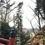 祇園橋から遠く観晃橋を望む