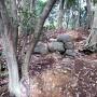 築城初期の石垣(八幡台)[提供:米子市教育委員会]