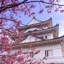 天守(早春)[提供:宇和島市教育委員会 文化・スポーツ課]
