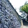 「千人殺し」石垣横の本丸登城口