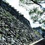 本丸への登城口
