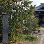 淀古城 石碑 (妙教寺境内)