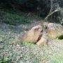 曲輪の巨石