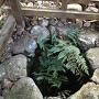 井戸跡の石積み