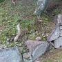 搦手門脇の石垣
