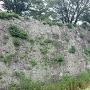 清水門脇の石垣