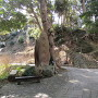 石碑と天守台跡