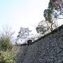 天守(春・ニ之門から)[提供:宇和島市教育委員会 文化・スポーツ課]