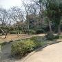蒔田の森公園(馬場跡)