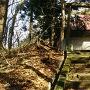 雷(いかづち)神社