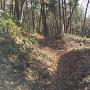 二重堀切から畝状竪堀群に変わる部分
