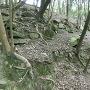 本丸南側石垣跡