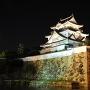 ライトアップされた岸和田城と石垣(2014年)[提供:岸和田市]