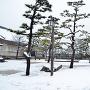 雪の二の丸広場(2014年)[提供:坂井市観光連盟]