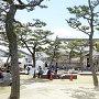 春の岸和田城二の丸広場(2013年)[提供:岸和田市]