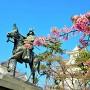 戸田氏鉄公像と河津桜