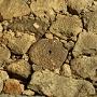 丸っこくて穴が開いている石垣の石