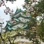 春爛漫 名古屋城