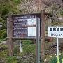 鷲尾城の登城口